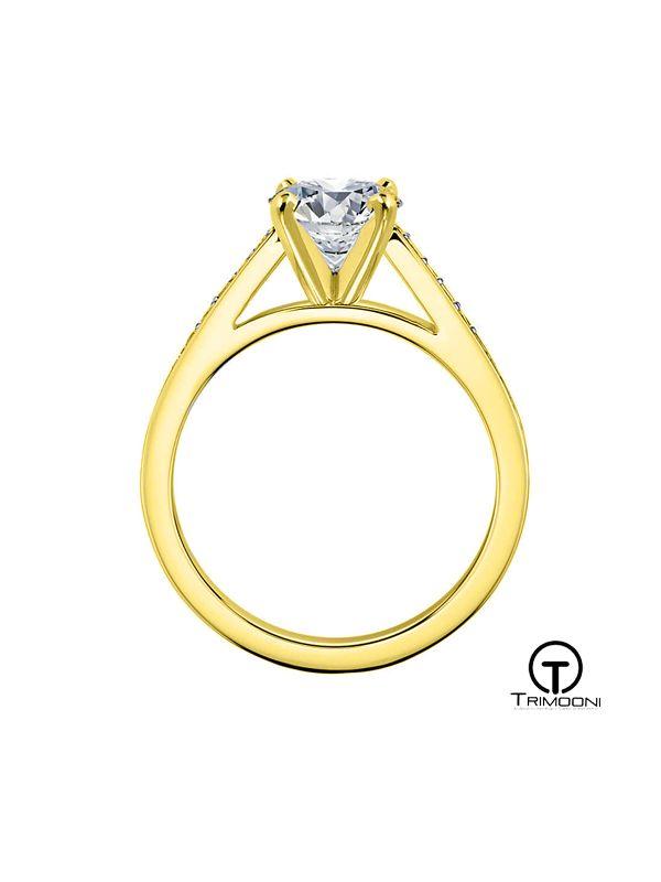 Cattedrale_ACOA || Anillo de Compromiso oro Amarillo Trimooni