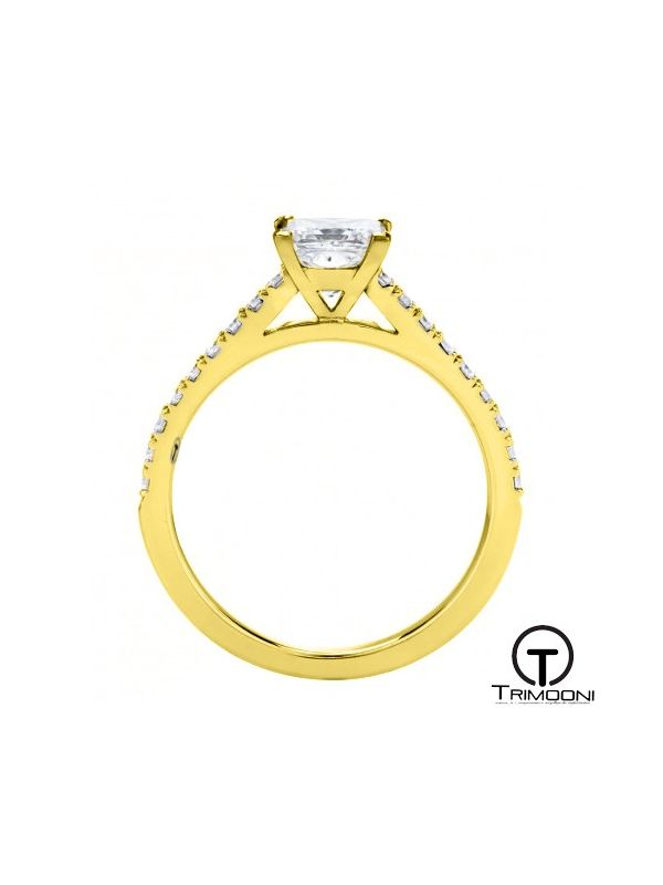 Coprid_ACOA || Anillo de Compromiso oro Amarillo Trimooni